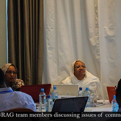 The ACCAF and GRAG team members discussing issues of common interest